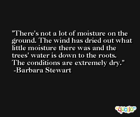 There's not a lot of moisture on the ground. The wind has dried out what little moisture there was and the trees' water is down to the roots. The conditions are extremely dry. -Barbara Stewart
