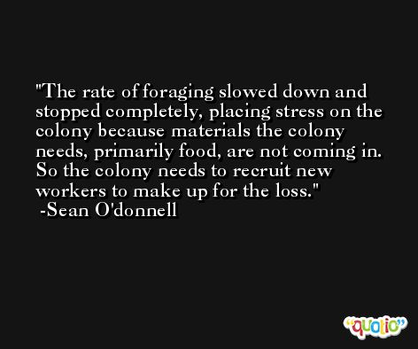 The rate of foraging slowed down and stopped completely, placing stress on the colony because materials the colony needs, primarily food, are not coming in. So the colony needs to recruit new workers to make up for the loss. -Sean O'donnell