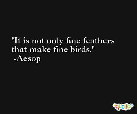 It is not only fine feathers that make fine birds. -Aesop