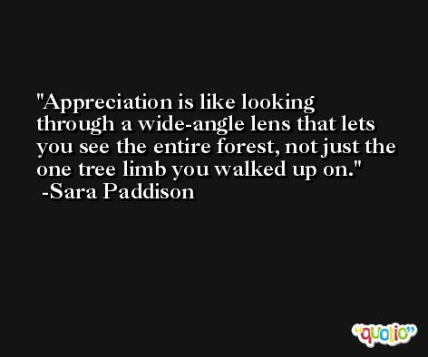 Appreciation is like looking through a wide-angle lens that lets you see the entire forest, not just the one tree limb you walked up on. -Sara Paddison