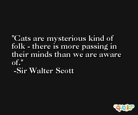 Cats are mysterious kind of folk - there is more passing in their minds than we are aware of. -Sir Walter Scott