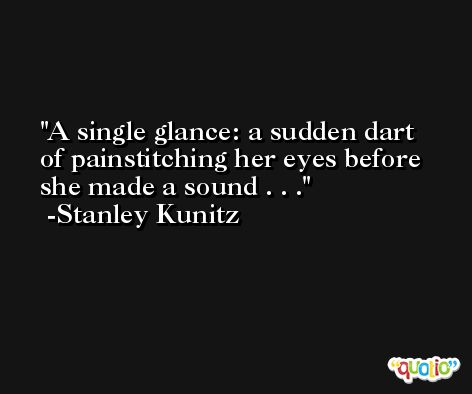 A single glance: a sudden dart of painstitching her eyes before she made a sound . . . -Stanley Kunitz
