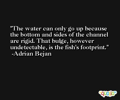 The water can only go up because the bottom and sides of the channel are rigid. That bulge, however undetectable, is the fish's footprint. -Adrian Bejan