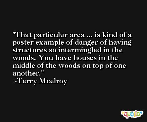 That particular area ... is kind of a poster example of danger of having structures so intermingled in the woods. You have houses in the middle of the woods on top of one another. -Terry Mcelroy