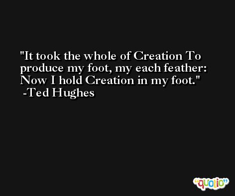 It took the whole of Creation To produce my foot, my each feather: Now I hold Creation in my foot. -Ted Hughes