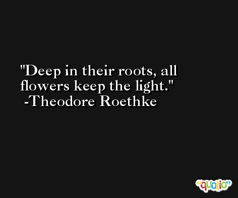 Deep in their roots, all flowers keep the light. -Theodore Roethke