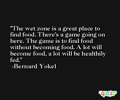The wet zone is a great place to find food. There's a game going on here. The game is to find food without becoming food. A lot will become food, a lot will be healthily fed. -Bernard Yokel