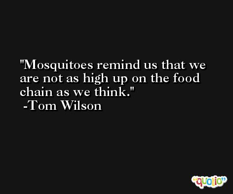 Mosquitoes remind us that we are not as high up on the food chain as we think. -Tom Wilson