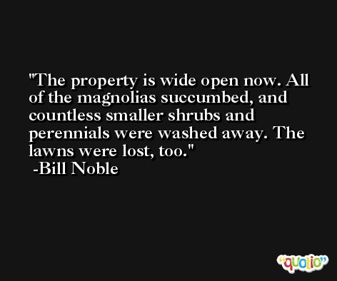 The property is wide open now. All of the magnolias succumbed, and countless smaller shrubs and perennials were washed away. The lawns were lost, too. -Bill Noble