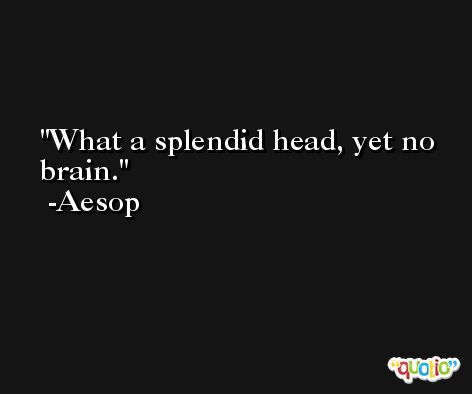 What a splendid head, yet no brain. -Aesop