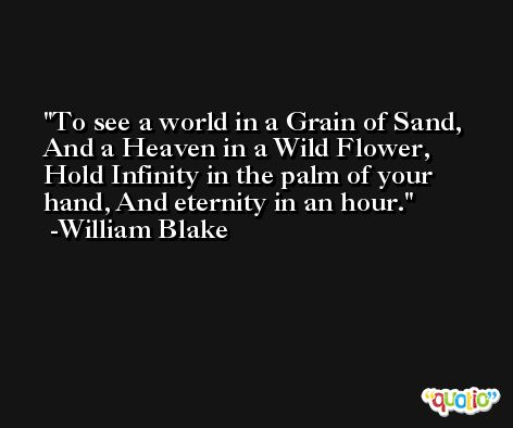 To see a world in a Grain of Sand, And a Heaven in a Wild Flower, Hold Infinity in the palm of your hand, And eternity in an hour. -William Blake