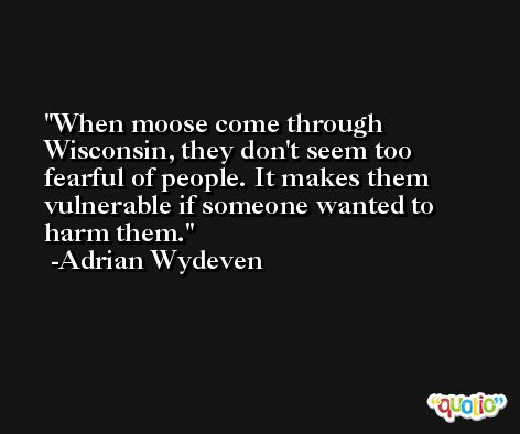 When moose come through Wisconsin, they don't seem too fearful of people. It makes them vulnerable if someone wanted to harm them. -Adrian Wydeven