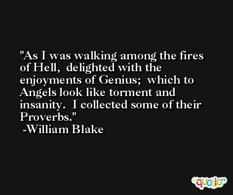 As I was walking among the fires of Hell,  delighted with the enjoyments of Genius;  which to Angels look like torment and insanity.  I collected some of their Proverbs. -William Blake