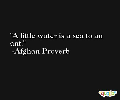 A little water is a sea to an ant. -Afghan Proverb
