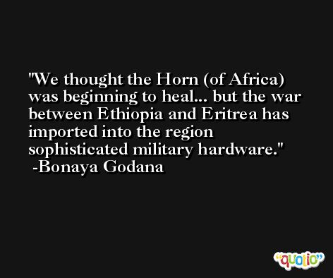 We thought the Horn (of Africa) was beginning to heal... but the war between Ethiopia and Eritrea has imported into the region sophisticated military hardware. -Bonaya Godana