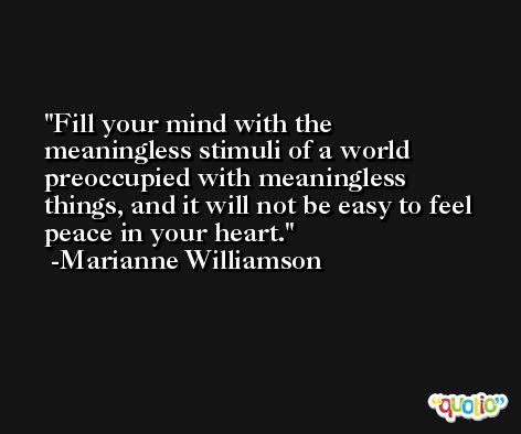 Fill your mind with the meaningless stimuli of a world preoccupied with meaningless things, and it will not be easy to feel peace in your heart. -Marianne Williamson