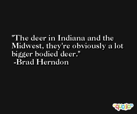 The deer in Indiana and the Midwest, they're obviously a lot bigger bodied deer. -Brad Herndon