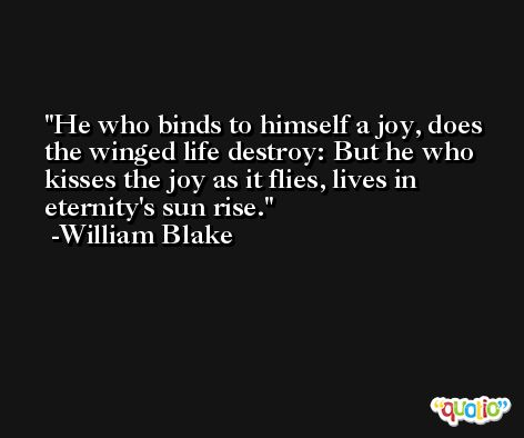He who binds to himself a joy, does the winged life destroy: But he who kisses the joy as it flies, lives in eternity's sun rise. -William Blake