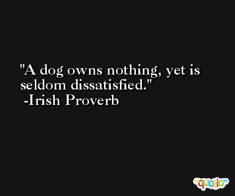 A dog owns nothing, yet is seldom dissatisfied. -Irish Proverb