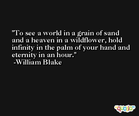 To see a world in a grain of sand and a heaven in a wildflower, hold infinity in the palm of your hand and eternity in an hour. -William Blake