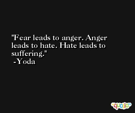 Fear leads to anger. Anger leads to hate. Hate leads to suffering. -Yoda