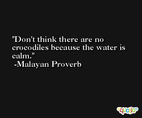 Don't think there are no crocodiles because the water is calm. -Malayan Proverb