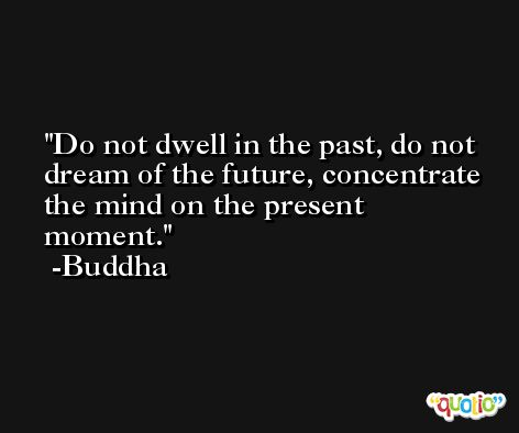 Do not dwell in the past, do not dream of the future, concentrate the mind on the present moment. -Buddha