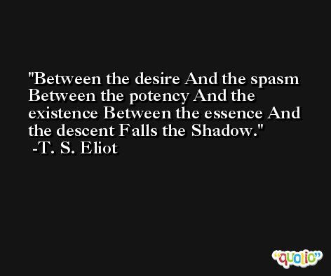 Between the desire And the spasm Between the potency And the existence Between the essence And the descent Falls the Shadow. -T. S. Eliot