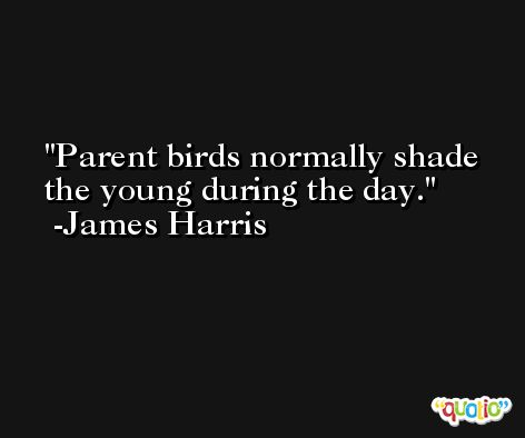 Parent birds normally shade the young during the day. -James Harris